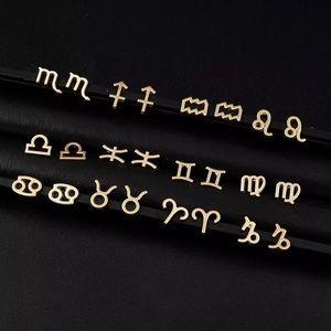Horoscope Minimalist Stainless Steel Stud Earrings